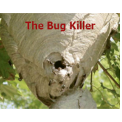 Logo de The Bug Killer